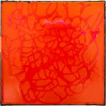 Rhizome  III, 30 x 30 cm